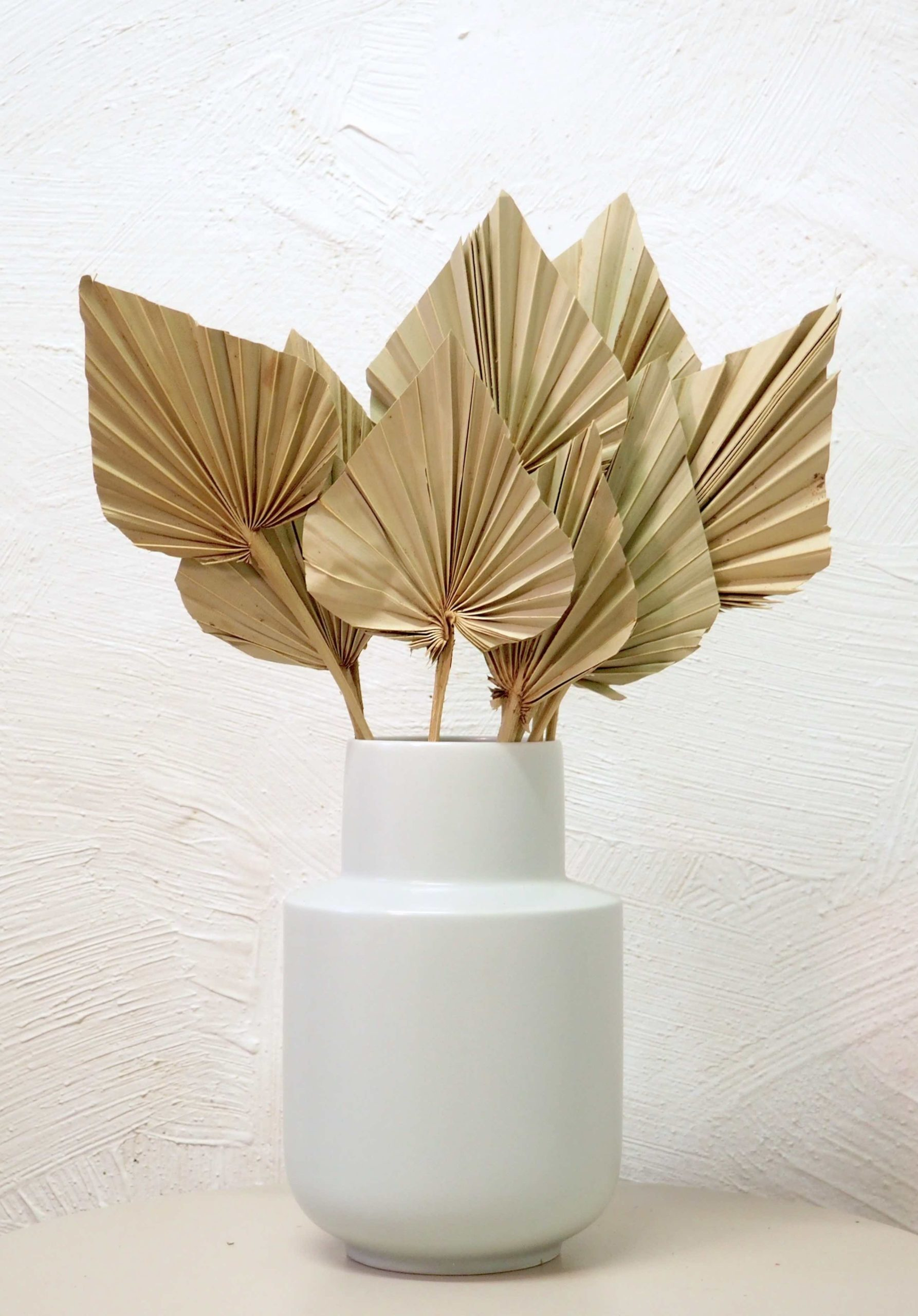 palmes-sechees-fleur-vente-en-ligne